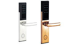 Intelligent Lock NG-LR-4